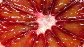 Ekstremum w górę krwionośnej pomarańcze zdjęcie wideo