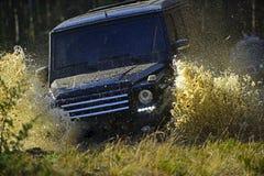 Ekstremum, wyzwanie i 4x4 pojazdu pojęcie, Samochodowy ścigać się w jesieni lasowej Offroad rasie na spadek natury tle SUV lub fotografia royalty free