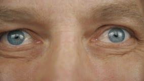 Ekstremum zamknięty up - frontowego widoku mężczyzna twarz ono przygląda się Błękitni popielaci samiec oczy Mężczyzna oko z różny zdjęcie wideo