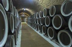 Ektrummor med vin i vinodlingen förvara i källare crimea royaltyfri bild
