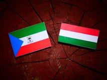 Ekvatorialguinea flagga med den ungerska flaggan på en isola för trädstubbe Arkivfoto
