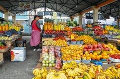 Ekwadorskiej kobiety owocowy sprzedawca przed jej pokazami tropikalne owoc w rynku Fotografia Stock