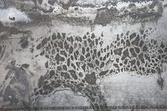 El ácido lavó el fondo inoxidable de la superficie de la placa de acero imagen de archivo