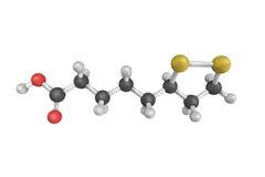 El ácido lipoico, manufacturado y está disponible como suppleme dietético fotografía de archivo