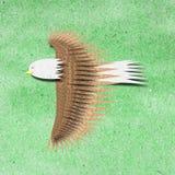 El águila recicla el arte de papel Imagen de archivo
