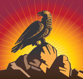 El águila se sienta en una pena Foto de archivo libre de regalías