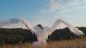 El ángel agita sus alas almacen de video