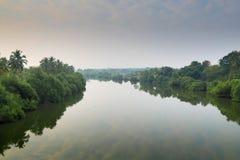 El árbol alineó la niebla de la mañana de la sal del río, Goa, la India Fotos de archivo libres de regalías