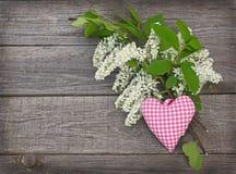 El árbol blanco de la pájaro-cereza florece en un fondo de madera Foto de archivo