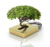 El árbol crece fuera del castillo stock de ilustración