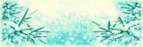 El árbol de abeto hermoso cubrió la nieve, primer Fondo panorámico de la tarjeta de felicitación de la Navidad del invierno, espa imagenes de archivo
