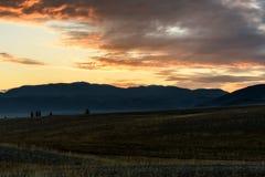 El árbol de la estepa de las montañas se nubla puesta del sol Imágenes de archivo libres de regalías