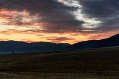 El árbol de la estepa de las montañas se nubla puesta del sol Imagen de archivo