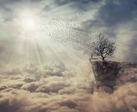El árbol de la muerte Imágenes de archivo libres de regalías