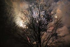 El árbol de los fuegos artificiales que fuma fotografía de archivo libre de regalías