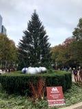 El árbol de navidad de Chicago del funcionario foto de archivo