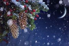 El árbol de navidad cubrió nieve en el cielo nocturno azul Fotos de archivo
