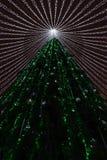 El árbol de navidad enciende el fondo fotografía de archivo libre de regalías