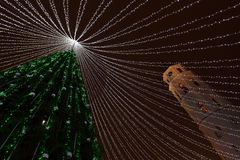 El árbol de navidad enciende el fondo festivo fotos de archivo libres de regalías