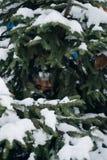El árbol de navidad, pino cubierto con la nieve, Año Nuevo, invierno es tiempo Imagenes de archivo