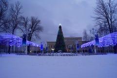 El árbol de navidad principal de la ciudad en el parque de la ciudad en la tarde Foto de archivo