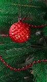 El árbol de navidad se adorna con las gotas y una cuenta de cristal roja Globo del ` s del Año Nuevo, con la superficie desigual  Fotografía de archivo