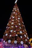 El árbol de navidad se destaca brillantemente Imagen de archivo