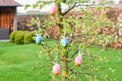El árbol de Pascua con el azul y el rosa adornó los huevos Imagen de archivo libre de regalías