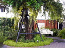 El árbol en el jardín fotos de archivo