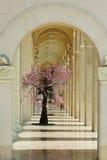 El árbol floreciente cuesta en una columnata de mármol blanca Fotografía de archivo