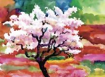 El árbol floreciente de la primavera de la acuarela en jardín vector el ejemplo Fotos de archivo