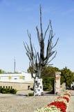 El árbol hecho del bronce con el epitafio firma en él Imagen de archivo