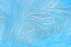 El árbol le gusta la decoración azul del invierno del hielo del fractal en una ventana Fotografía de archivo