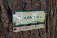 El árbol protegido firma en la lengua de checo en corteza imagenes de archivo