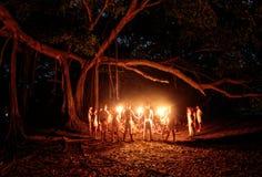 El árbol que camina Royalty Free Stock Images