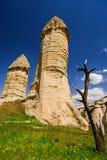 El árbol secado en el fondo de las formaciones de la piedra arenisca en Cappadocia, Turquía Una vista del valle del amor imagenes de archivo