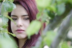 El árbol verde detrás adolescente del pelo bastante rojo se va Fotografía de archivo libre de regalías