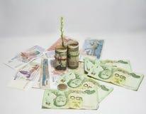 El árbol verde que brota de billetes de banco de los E.E.U.U. del rollo y utiliza una goma con los billetes de banco japoneses de fotografía de archivo