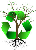 El árbol y recicla Foto de archivo libre de regalías