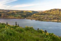 El área escénica nacional de la garganta del río Columbia pasa por alto Fotos de archivo