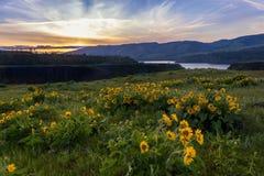 El área escénica nacional de la garganta del río Columbia pasa por alto Foto de archivo libre de regalías