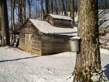 Estación el azucarar de arce - casa y cubos del azúcar Imagen de archivo libre de regalías