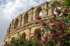 El-варенье, colosseum, Тунис Стоковая Фотография