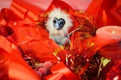 El año del mono y del rojo del fuego Imagenes de archivo