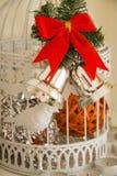 El Año Nuevo adornó la jaula Foto de archivo libre de regalías