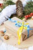 El Año Nuevo de la Navidad del regalo de la Navidad con la decoración del nacional ucraniano colorea las frutas y la malla del me Fotografía de archivo libre de regalías