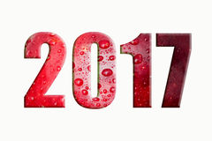 El Año Nuevo desea 2017 Imagen de archivo libre de regalías