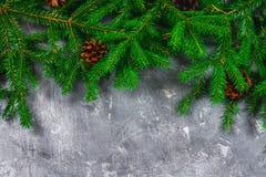 El Año Nuevo Spruce ramifica con los conos encima de un fondo concreto gris La Navidad del Año Nuevo Espacio libre para el texto Fotografía de archivo libre de regalías