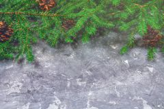 El Año Nuevo Spruce ramifica con los conos encima de un fondo concreto gris La Navidad del Año Nuevo Espacio libre para el texto Imagen de archivo