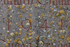 El año 1941 talló en la cubierta de piedra con el musgo Imágenes de archivo libres de regalías